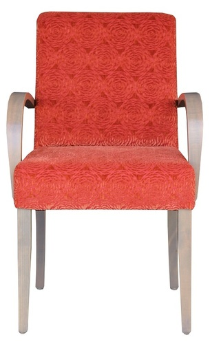 Dining and Occasional Davina Wooden Arm Chair Front View